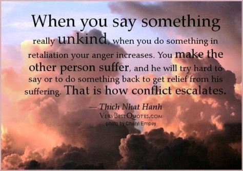 when-you-say-something-really-unkind-when-you-do-something-in-retallation-your-anger-increases-anger-quote