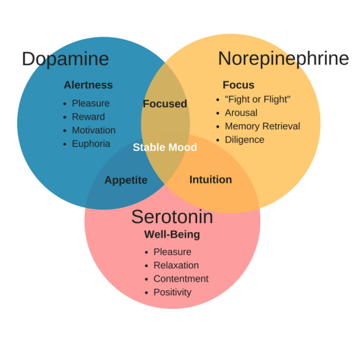 Improving Dopamine Levels