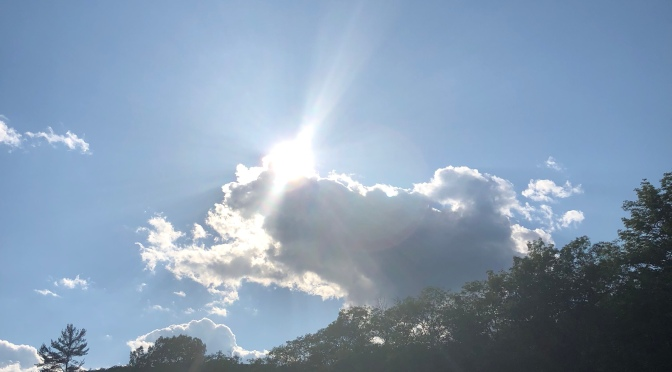 7 Strategies to Outsmart the Sun: Staying Clear of Summer Mania